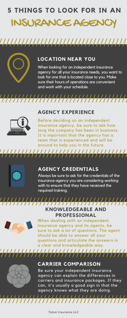 Infographic of What To Look For In An Insurance Agency